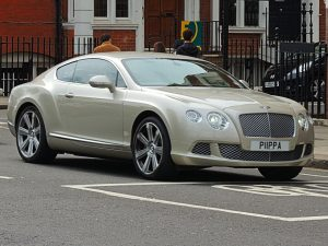 Bentley Continental PIIPPA